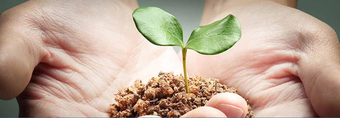 القرض الفردي لتمويل وتطوير نشاطكم