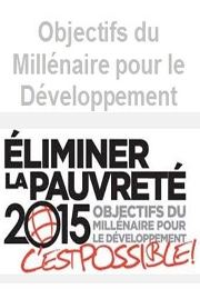 Objectifs du Millénaire pour le Développement : Des résultats plutôt mitigés pour le Maroc