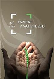 تقرير نشاط 2013